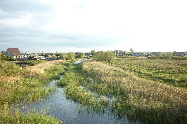 Касимов рязанская область фото города пауки