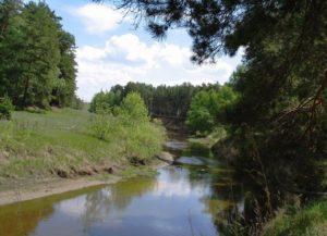 Река Куртамыш